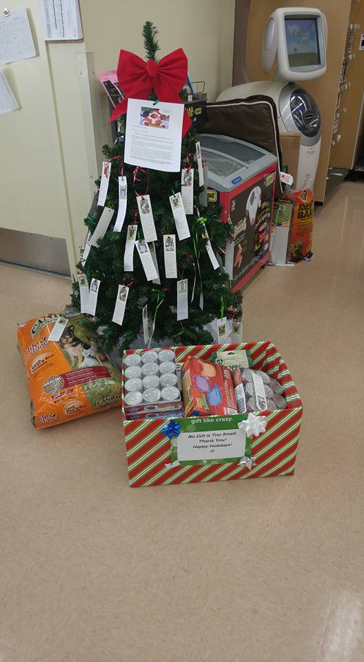 Angel Tree 2015 - Petco Harrison Crossing